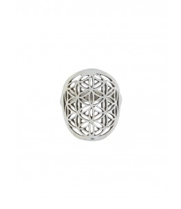 PARKHA JAALI VERTICAL RING